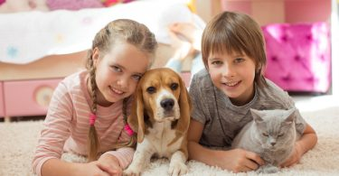 Les enfants et les animaux de compagnie